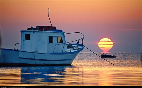 Fishing boats - Flickr 11687025053.jpg